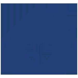 300 x 300 House